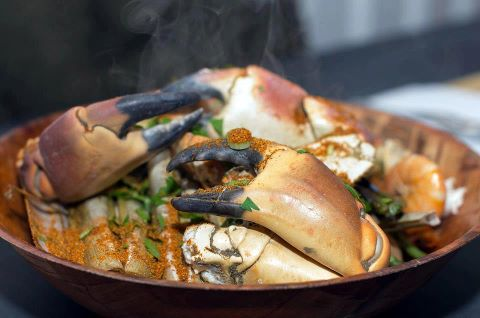 FINGERS AND THUMBS: Seafood Shack takes on Studio Gi