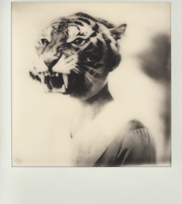 IMPOSSIBLE: Celebrates the launch of Instant Lab Universal with a 3 day exhibition
