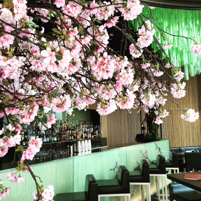 SAKURA: The secret cherry blossom garden returns to Sake No Hana
