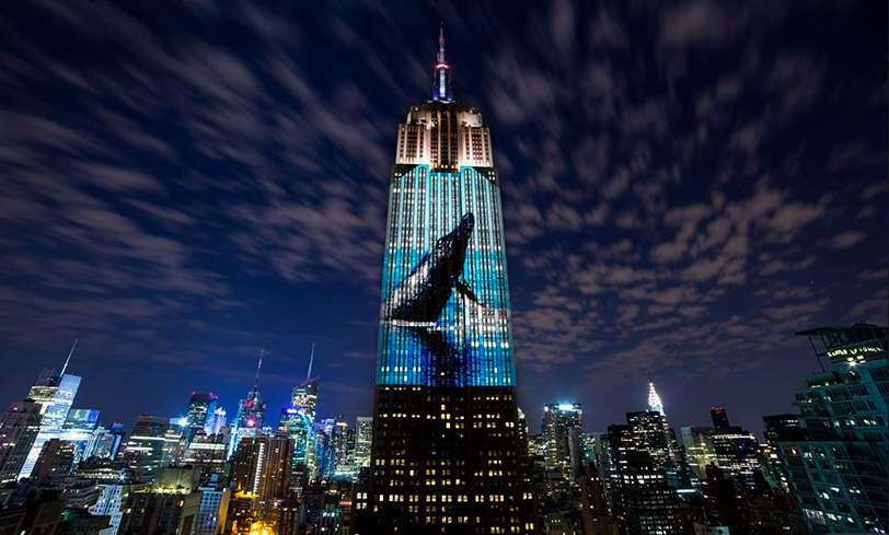 40-STORY PROJECTION MAPPING ENDANGERED SPECIES: Empire State Building
