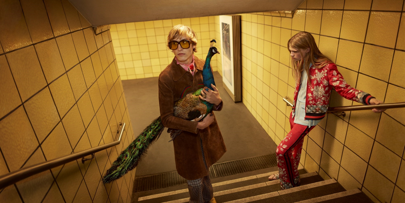 GUCCI: Peacocks & scateboards SS16