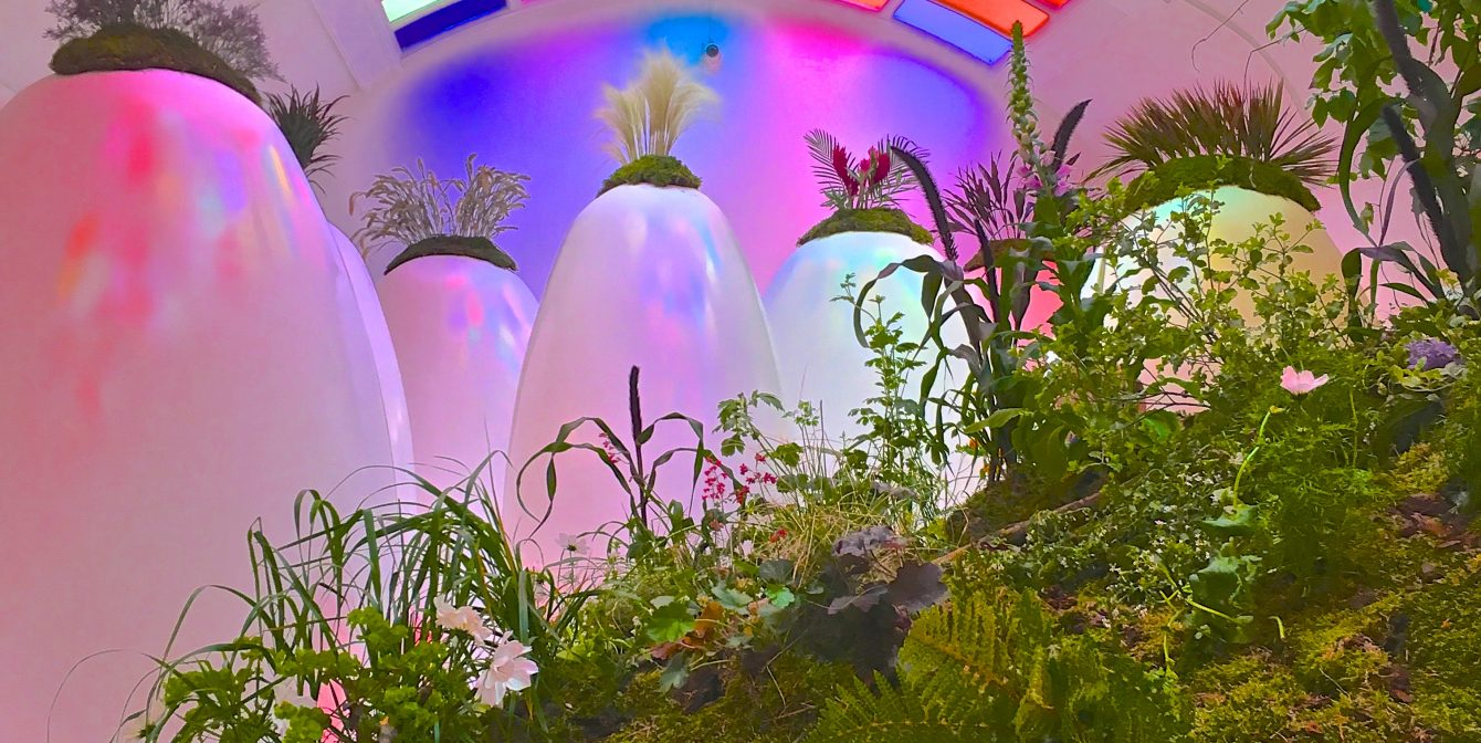 MAYFAIR IN BLOOM: Sketch is transformed into an oasis of colour and scent as it hosts first-ever flower show