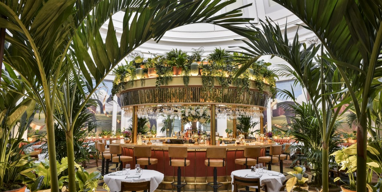 THE IVY MONTPELLIER BRASSERIE CHELTENHAM: A merry go round with a delicious vegan / vegetarian menu and stunning historic venue